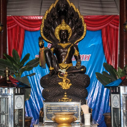 Brown Goddess, Golden Buddha, BKK