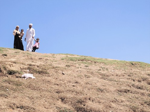 Family Hill, Ooty 3