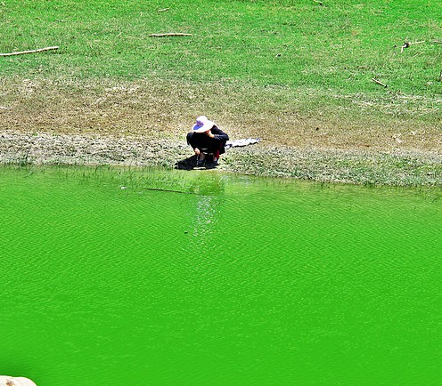 Green Ama, Ooty 3