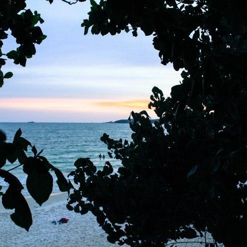 leaf-sunset-ko-samet_