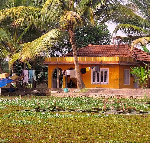 Mellow Yellow, Trivandrum