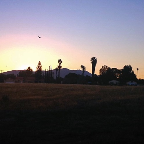 Morning, Riverside, CA
