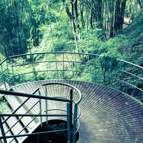 mossy-stairs-amphoemueang-kanchanaburi-thailand_