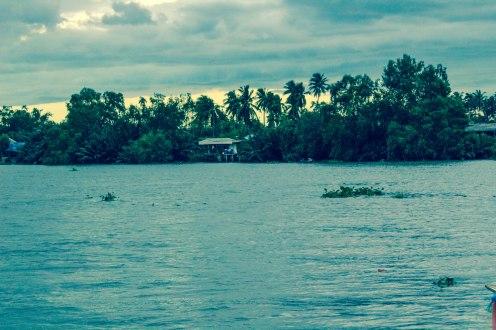 palm-sunset-amphawa-thailand-copy