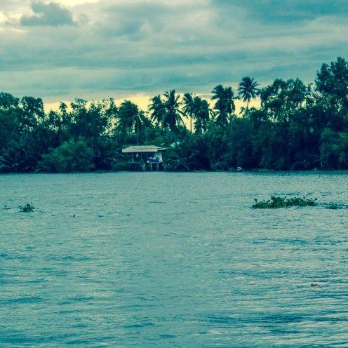 palm-sunset-amphawa-thailand