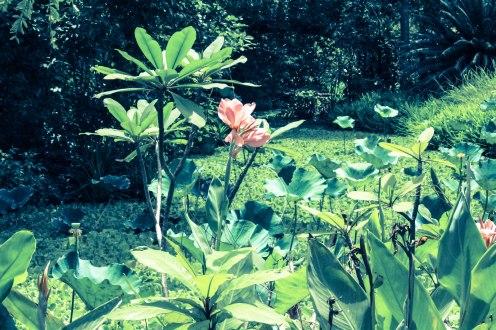 pinkies-buddhamonthon-copy-2