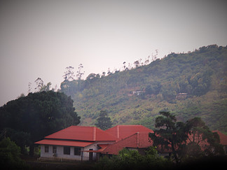 Red Roof,Munnar