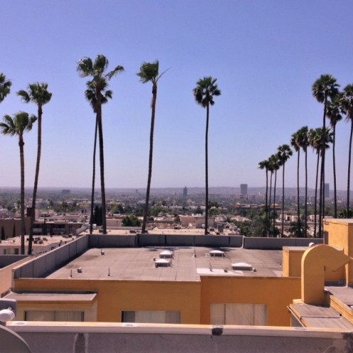 Rooftop, Hollywood, CA