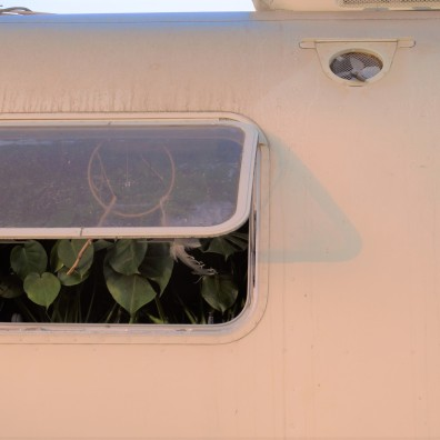 sunrise trailer, LIB