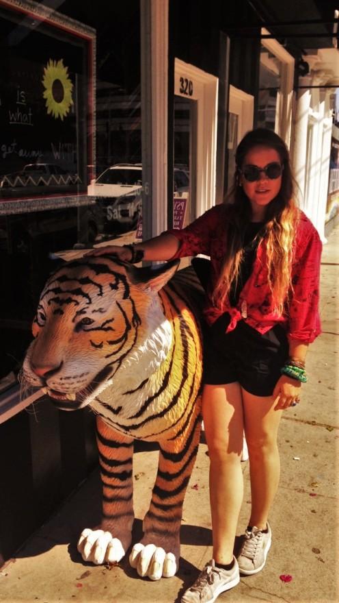 Tigre, br33zzyy