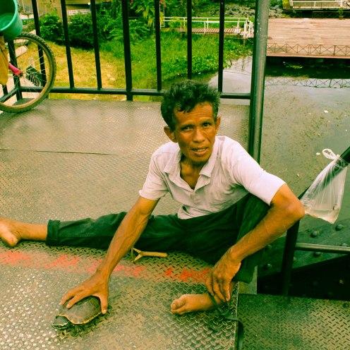 turtle-som-lom-thailand-copy