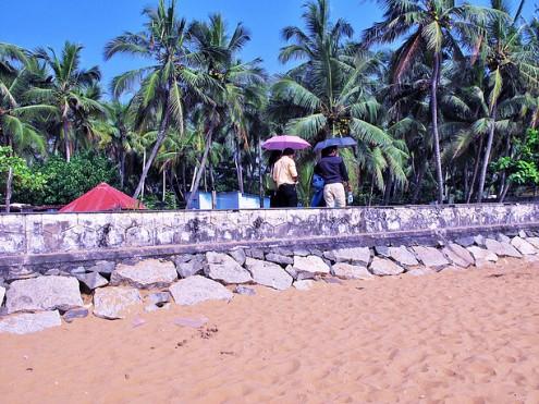 Umbrellas, Trivandrum 2