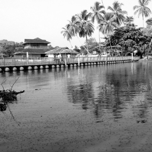 Palmz, Trivandrum, Kerala