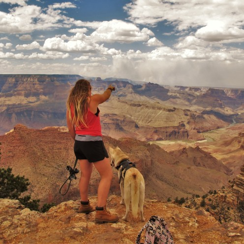 What's That, br33zzyy and Sitka, Grand Canyon